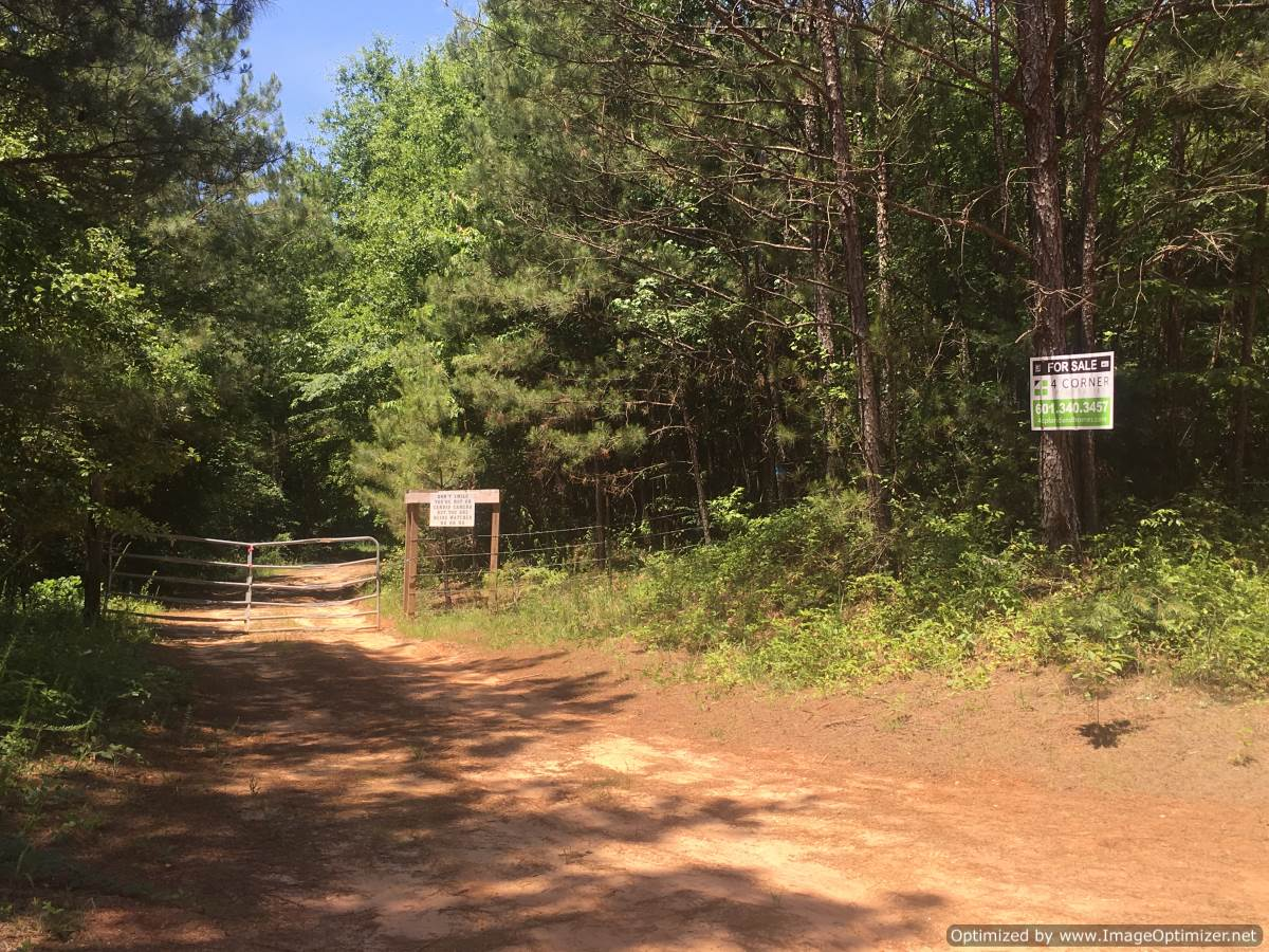 Newton County - 80± Acres - 4 Corner Properties