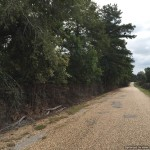 1. Pike County Mississippi Development Land For Sale