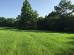 Copiah County Mississippi Pasture Land For Sale