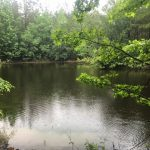 Marion County MS Hunting Land For Sale