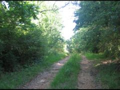 Madison County MS Land For Sale