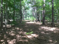 Hinds County MS Land For Sale