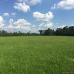 1. Lincoln County MS Land For Sale