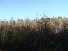 Pike County MS Residential Lots For Sale