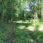 196 Old Robinson Springs Rd, Madison, MS