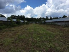 perry-county-ms-land-for-sale