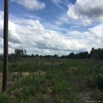 5.82± Acres, Copiah County, MS