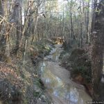 62± Acres, Franklin County, MS