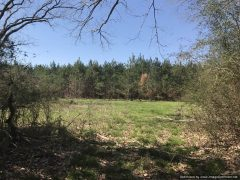clarke-county-ms-land-for-sale