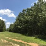 54± Acres, Franklin County, MS