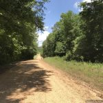 16± Acres, Franklin County, MS