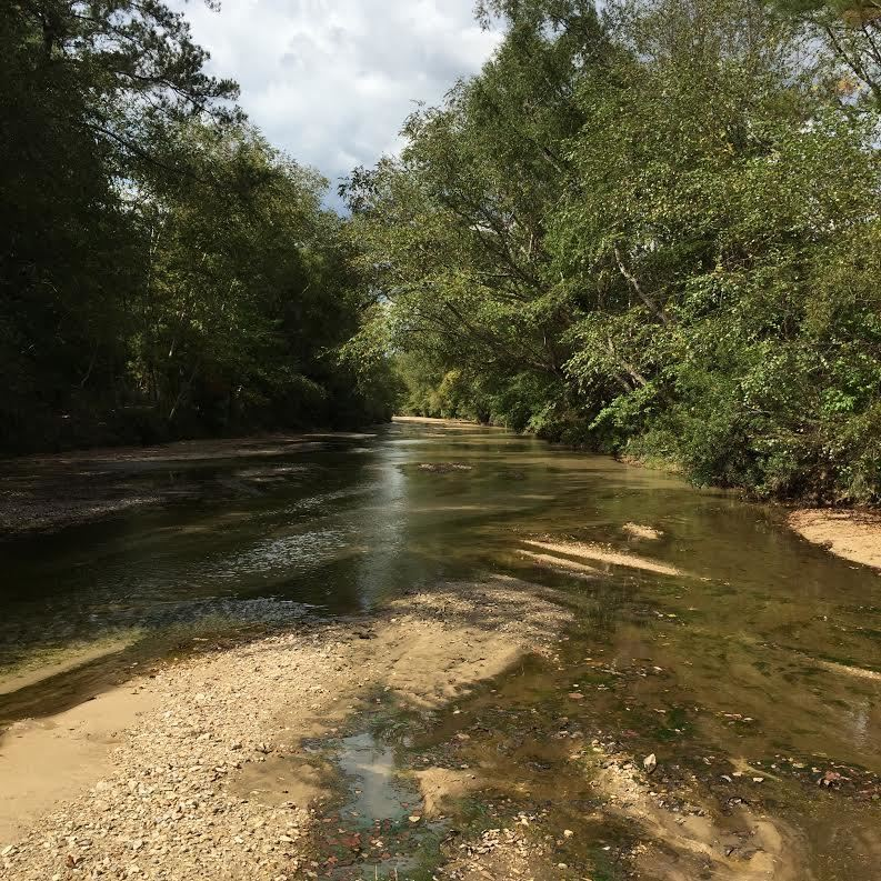franklin-county-ms-land-for-sale