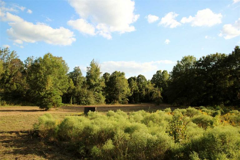 attala-county-ms-land-for-sale