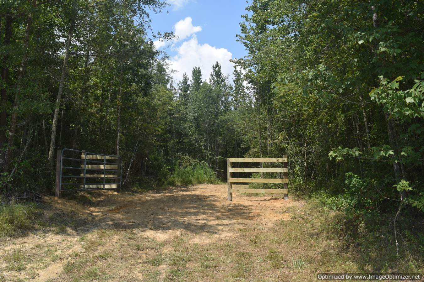land-for-sale-in-smith-county-ms