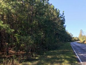 lincoln-county-ms-land-for-sale