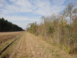 simpson-county-ms-land-for-sale