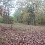 3.3± Ac Lot in Madison County, MS