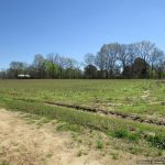 433± Acres, Madison County, MS