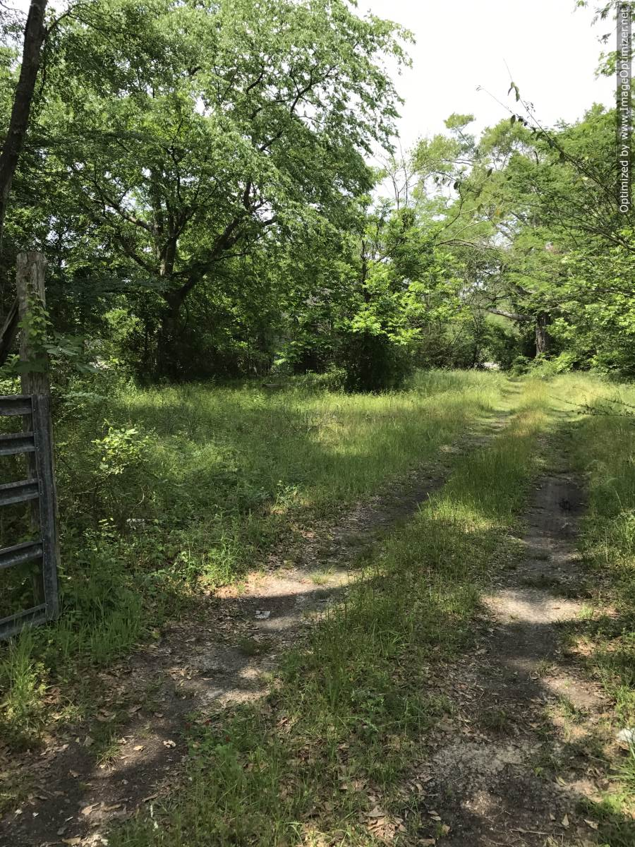 land-for-sale-in-clark-county-ms