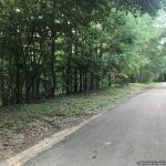 9.9 Acres in Adams County, MS