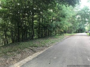land-for-sale-in-adams-county-ms