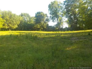 residential-land-for-sale-in-lamar-county-ms