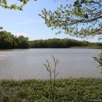 757± Acres in Tallahatchie County, MS