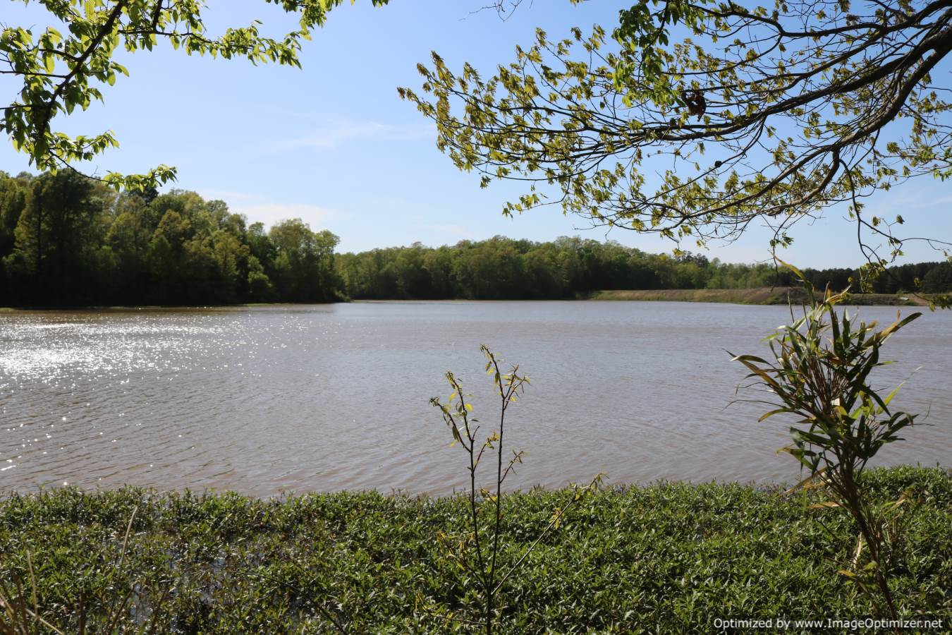 waterfront-property-for-sale-in-tallahatchie-county-ms
