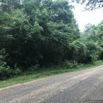 20± Acres in Lincoln County, MS