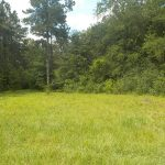 3± Acres in Lamar County, MS