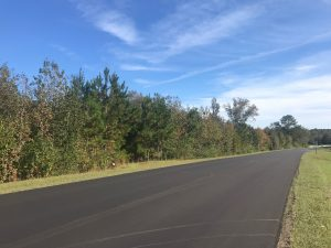 land-for-sale-in-copiah-county-ms