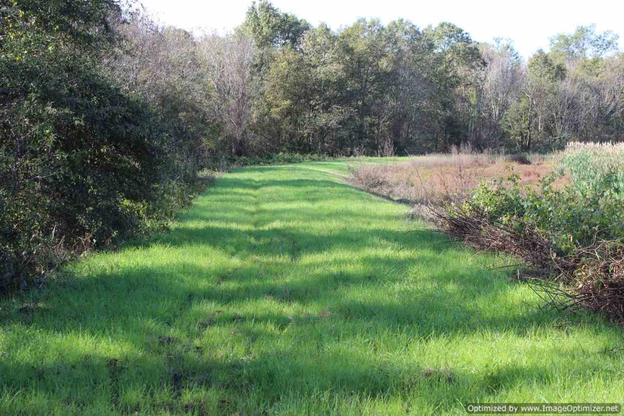 land-for-sale-in-leflore-county-ms