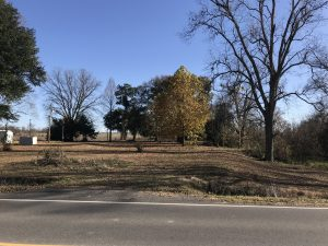lot-for-sale-in-tensas-parish-la