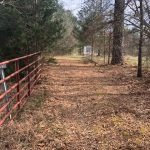 153± Acres in Attala County, MS