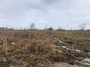 land-for-sale-in-lincoln-county-ms