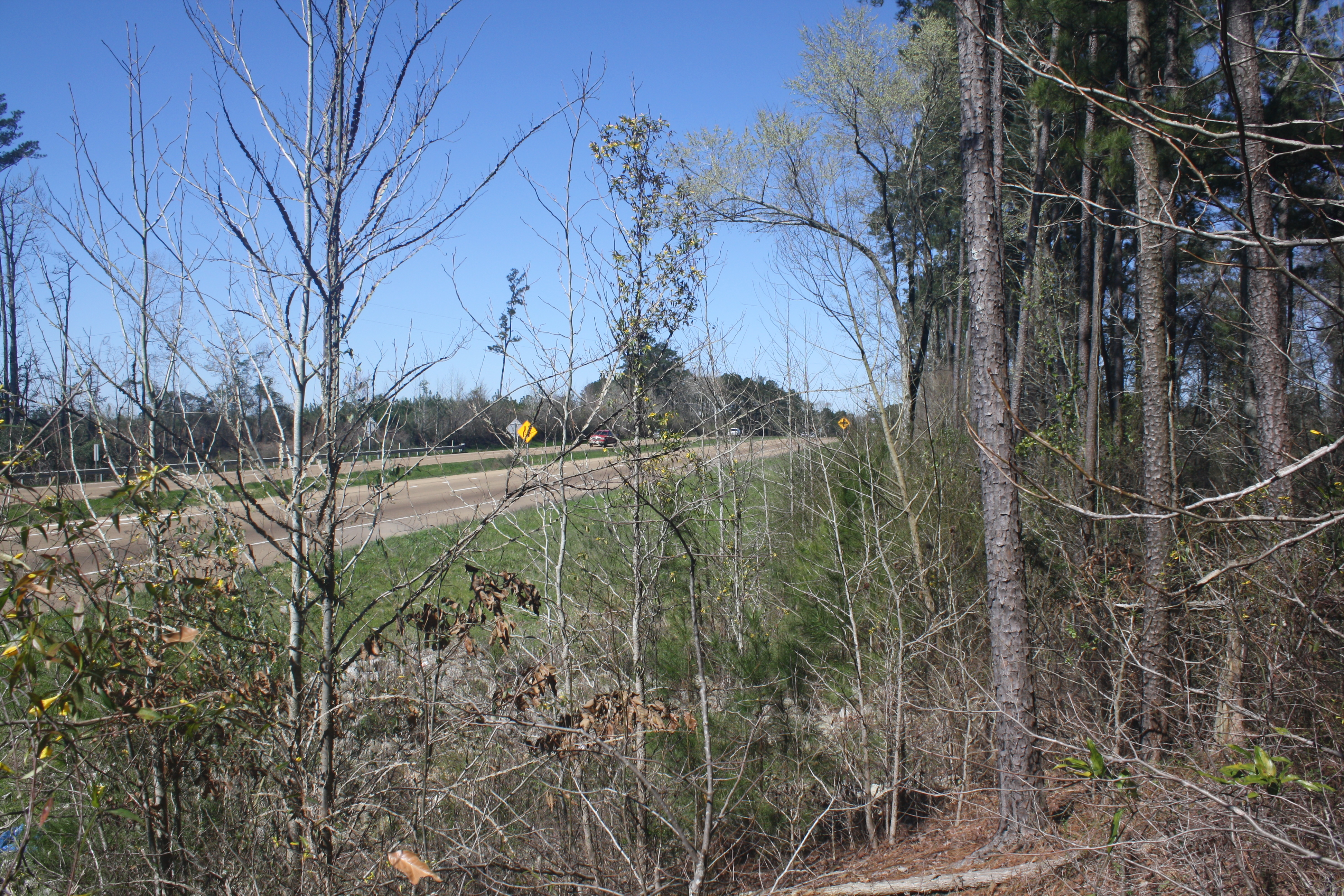 land-for-sale-in-rankin-county-ms