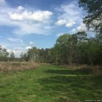 60± Acres in Lawrence County, MS
