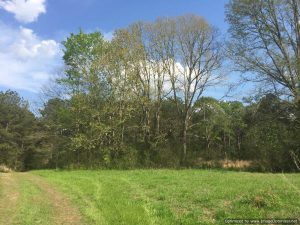 lincoln-county-land-for-sale