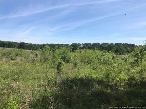 land-for-sale-in-lawrence-county-ms