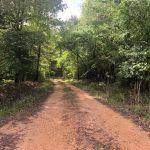 12.5± Acres in Copiah County