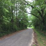 23± Acres in Lincoln County, MS