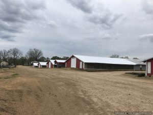 poultry-farm-for-sale-in-copiah-county-ms
