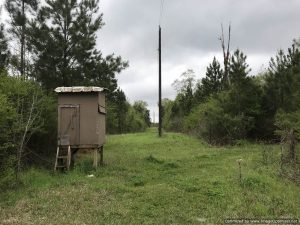 hunting-land-for-sale-in-franklin-county-ms