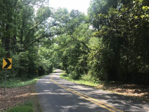 land-for-sale-west-feliciana-louisiana-hunting-home-site