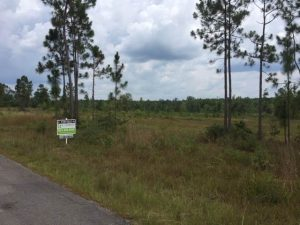 land-for-sale-in-stone-county