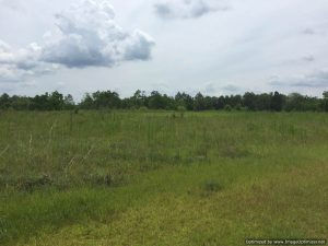 land-for-sale-perkinston-ms