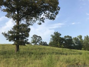 House-and-land-in-franklin-county-mississippi-smithdale