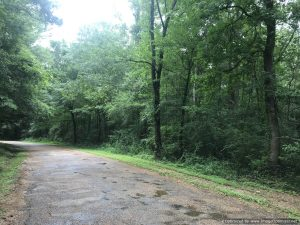 land-for-sale-lincoln-county-bogue-chitto-river-views
