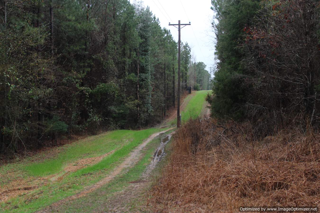land-for-sale-in-copiah-county