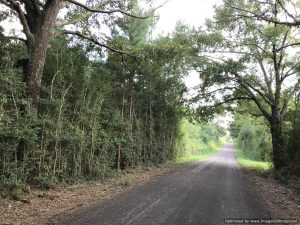 land-for-sale-magnolia-mississippi-pike-county